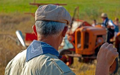 La Lagopesole contadina secondo Michele Luongo