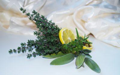 Il cibosofo e le erbe aromatiche