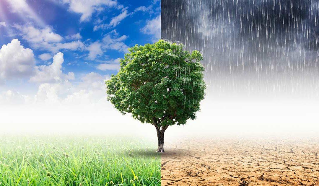 Previsioni meteo in Basilicata 23 – 26 Novembre (a cura di Meteo7.it)