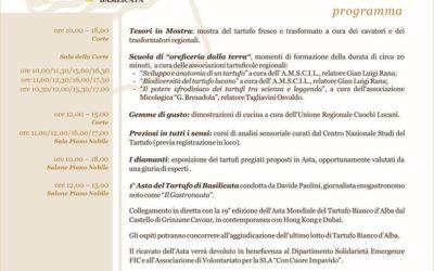 """11 Novembre a Matera – """"Tesori della terra"""", il tartufo lucano in mostra"""