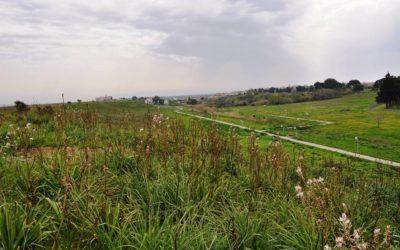 """Vivi Heraclea"" a spasso  tra Archeologia e Natura"