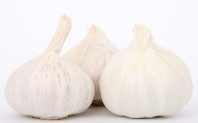 Il Cibosofo e l'aglio