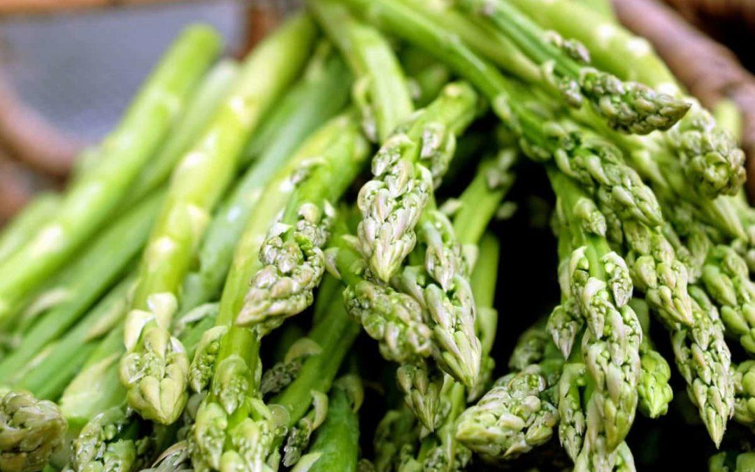 Il Cibosofo e gli asparagi