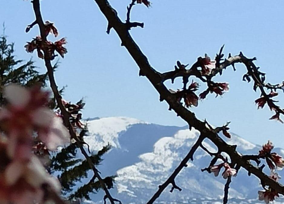 Previsioni meteo in Basilicata: Aprile…non ti scoprire ( a cura di Germano Di Leo – Meteorologo AMPRO)